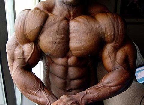 Большим мышцам — красивую форму