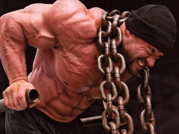 Секреты построения мощного тела