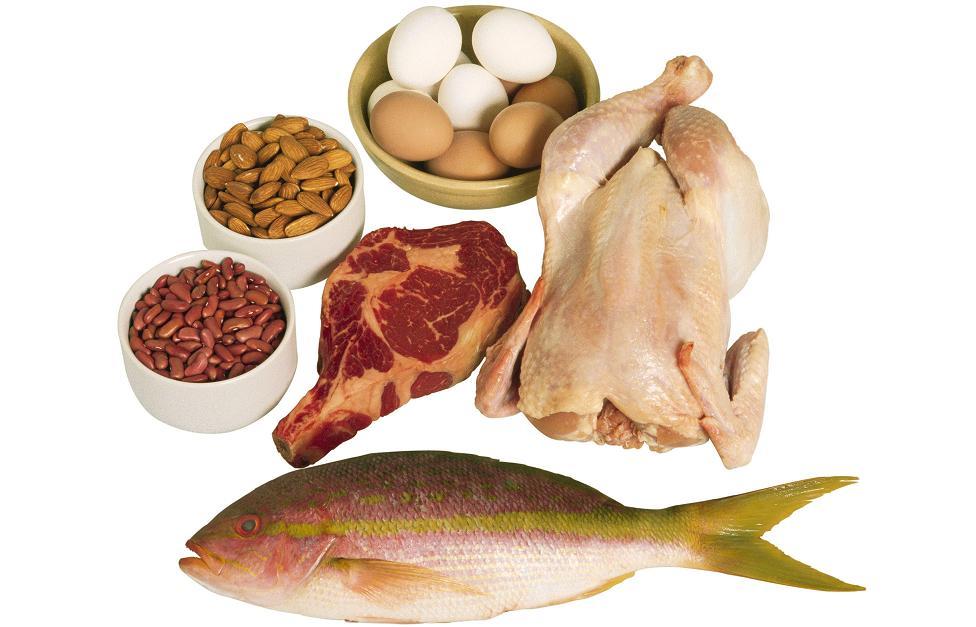 Сколько нужно есть белка