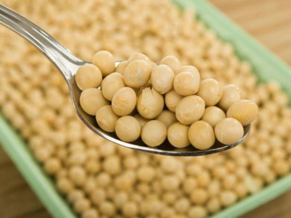 Соевый белок и продукты из сои