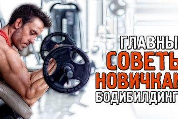 10 советов новичкам от профессионалов бодибилдинга