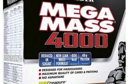 Mega Mass 4000