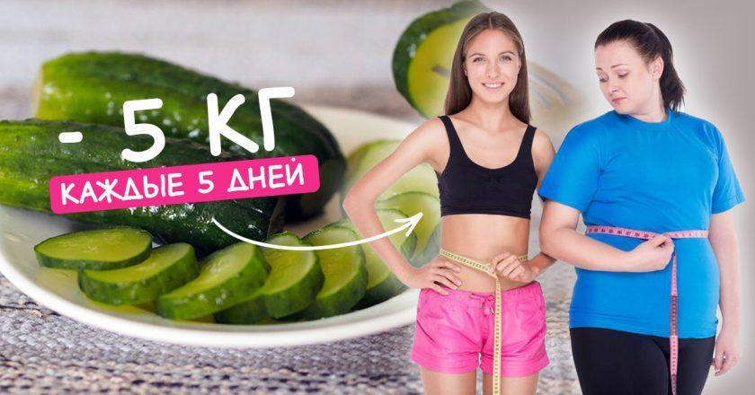 Огуречная диета для похудения