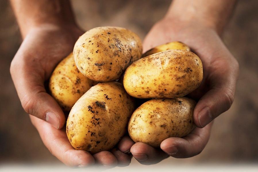 Картофель – друг или враг для похудения?
