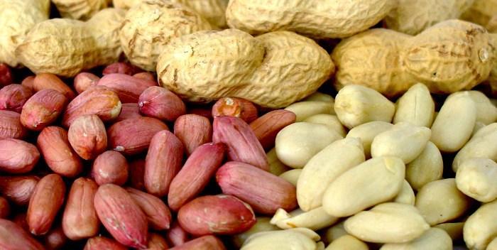 Употребление арахиса может продлить жизнь
