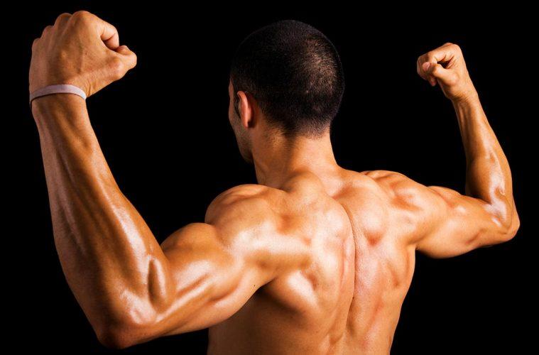 Программа для мышц спины