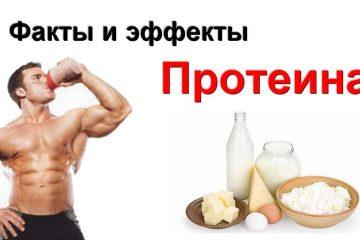 Вред протеина
